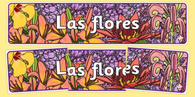 Flowers Display Banner Spanish - spanish, plants, flower, header, display
