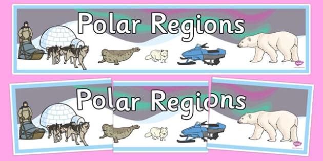 Polar Regions Display Banner - Polar Regions Display Banner, Polar Regions Display Banner, Polar Regions, polar region, region, polar, display, banner, sign, poster, ice, North Pole, South Pole, Arctic, Antarctic, polar bear, penguin, glacier, iceber