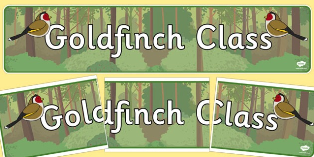 Goldfinch Class Display Banner - goldfinch, class, display banner