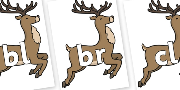 Initial Letter Blends on Reindeer - Initial Letters, initial letter, letter blend, letter blends, consonant, consonants, digraph, trigraph, literacy, alphabet, letters, foundation stage literacy