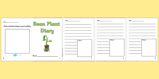 Bean plant diary writing frames bean plant diary bean for Diary writing template ks1