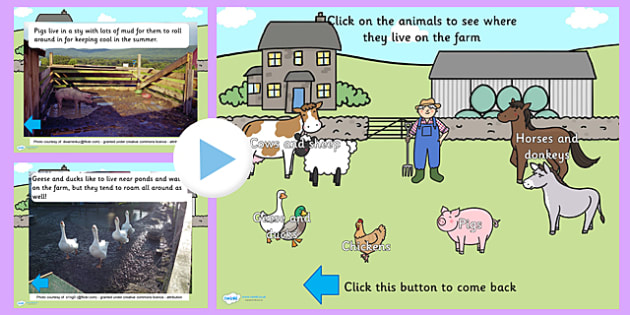 Twinkl Farm Animal Colouring Pages : On the farm animal homes powerpoint on farm