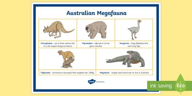 Australian Megafauna Display Poster - mega fauna, Australian animals, extinct animals, extinct Australian animals, megafauna, Australian m