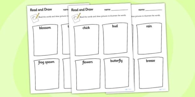 Spring Read And Draw Worksheet - spring, read, draw, seasons, worksheet