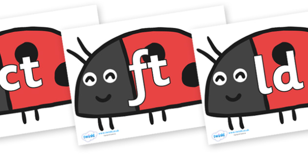 Final Letter Blends on Ladybird to Support Teaching on What the Ladybird Heard - Final Letters, final letter, letter blend, letter blends, consonant, consonants, digraph, trigraph, literacy, alphabet, letters, foundation stage literacy