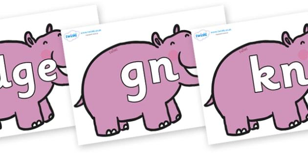 Silent Letters on Hippos - Silent Letters, silent letter, letter blend, consonant, consonants, digraph, trigraph, A-Z letters, literacy, alphabet, letters, alternative sounds