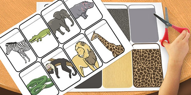 Wild Animals Colour Matching Activity Flashcards - flashcards