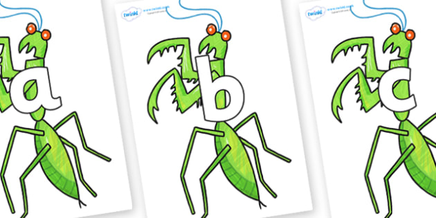 Phoneme Set on Praying Mantis to Support Teaching on The Bad Tempered Ladybird - Phoneme set, phonemes, phoneme, Letters and Sounds, DfES, display, Phase 1, Phase 2, Phase 3, Phase 5, Foundation, Literacy