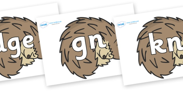 Silent Letters on Hedgehogs - Silent Letters, silent letter, letter blend, consonant, consonants, digraph, trigraph, A-Z letters, literacy, alphabet, letters, alternative sounds