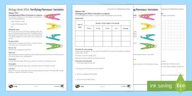 Terrifying Pterosaur Variation Activity Sheets - Biology Week, variation, genetic, characteristics, advantages, genes, gene, competition, species, na