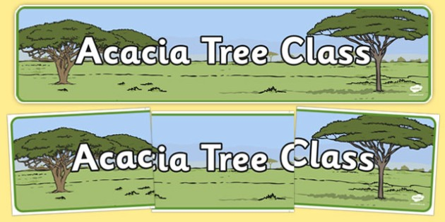 Acacia Themed Classroom Display Banner - Themed banner, banner, display banner, Classroom labels, Area labels, Poster, Display, Areas