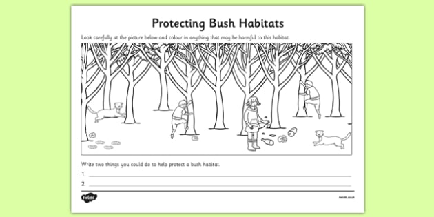 Protecting Bush Habitats Colouring Activity - australia, Science, Year 1, Bush, Habitats, Australian Curriculum, Living, Living Adventure, Environment, Living Things, Animals, Plants, Worksheet