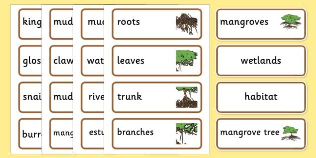 Australian Mangrove Habitat Word Cards - australia, Science, Year 1, Habitats, Australian Curriculum, Mangrove, Living, Living Adventure, Good to Grow, Ready Set Grow, Life on Earth, Environment, Living Things, Animals, Plants, Word Cards