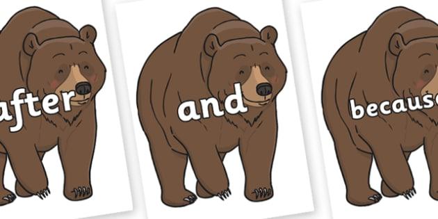 Connectives on Bear - Connectives, VCOP, connective resources, connectives display words, connective displays