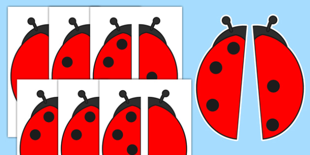 Ladybird Spot Number Bonds to 5 Matching Activity - ladybird, spot, number bonds, matching, activity, addition, early years, eyfs, maths