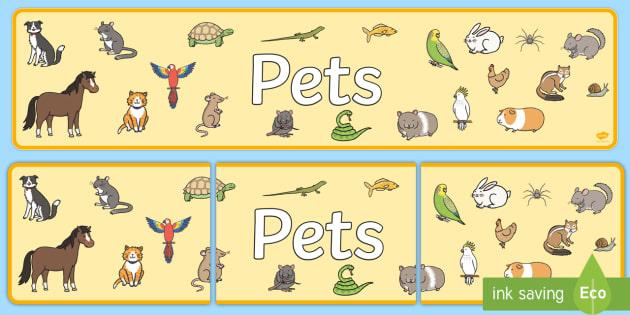 Pets Display Banner - Pets display, banner, poster, cat, dog, rabbit, mouse, guinea pig, rat, hamster, gerbil, horse, puppy, kitten, snake, chinchilla, snail, lizard, budgie