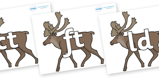 Final Letter Blends on Caribous - Final Letters, final letter, letter blend, letter blends, consonant, consonants, digraph, trigraph, literacy, alphabet, letters, foundation stage literacy