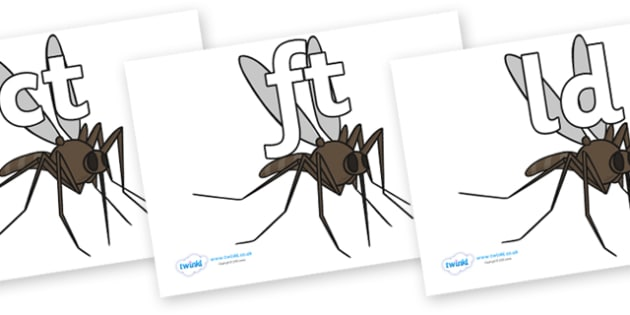 Final Letter Blends on Mosquitos - Final Letters, final letter, letter blend, letter blends, consonant, consonants, digraph, trigraph, literacy, alphabet, letters, foundation stage literacy