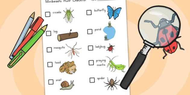 Minibeasts Investigation Lab Checklist of Minibeasts - role play