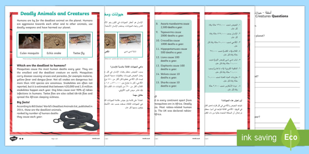 Deadly Animals and Creatures Differentiated Reading Comprehension Activity Arabic/English - deadly, animals, creatures, KS1 reading, non-fiction, information, comprehension, questions, fact fi