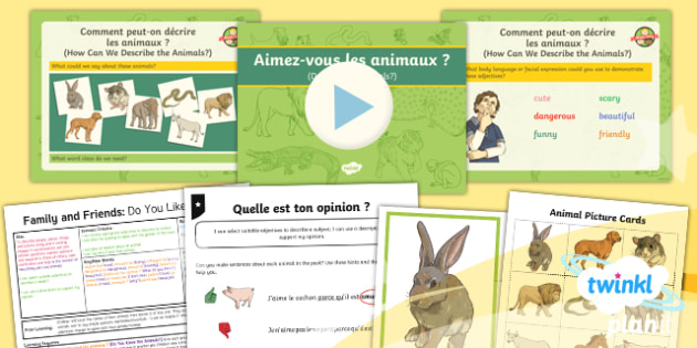 French: Family and Friends: Do You Like Animals? Year 5 Lesson Pack 5