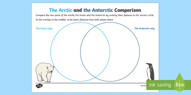 Arctic and Antarctic Comparison Activity - The Arctic, Polar Regions, north pole, south pole, explorers, comparison, arctic and antarctic