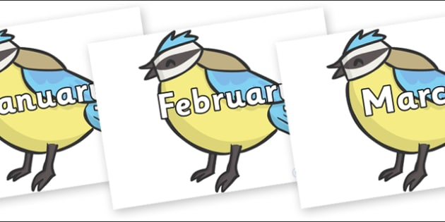 Months of the Year on Birds - Months of the Year, Months poster, Months display, display, poster, frieze, Months, month, January, February, March, April, May, June, July, August, September