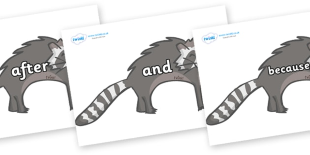 Connectives on Raccoons - Connectives, VCOP, connective resources, connectives display words, connective displays