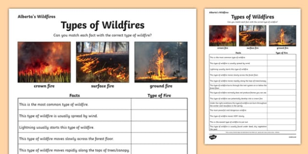 Alberta's Wildfire Types of Wildfires - canada, Alberta, wildfire, fire, natural disaster, communication, speaking, discussion
