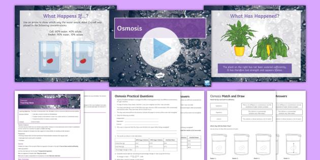AQA Unit 4.1 Osmosis Cover Lesson Pack - osmosis, hypertonic, isontonic, hypotonic , potato chips, semi permeable membrane