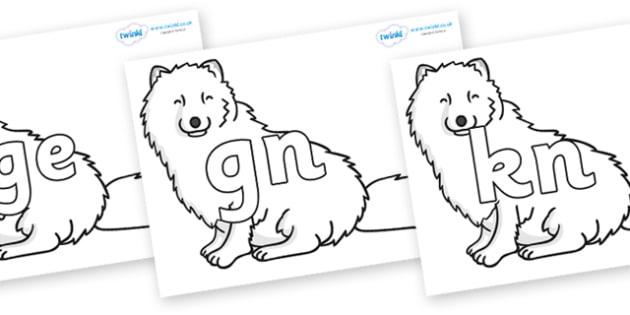 Silent Letters on Arctic Foxes - Silent Letters, silent letter, letter blend, consonant, consonants, digraph, trigraph, A-Z letters, literacy, alphabet, letters, alternative sounds