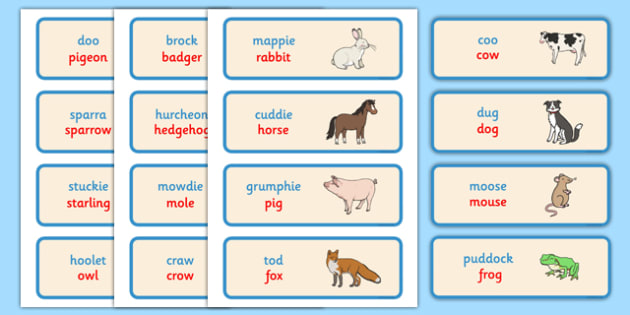 Scots Animal Words Cards - CfE, Literacy, Scots Language, cfe, animal, word cards