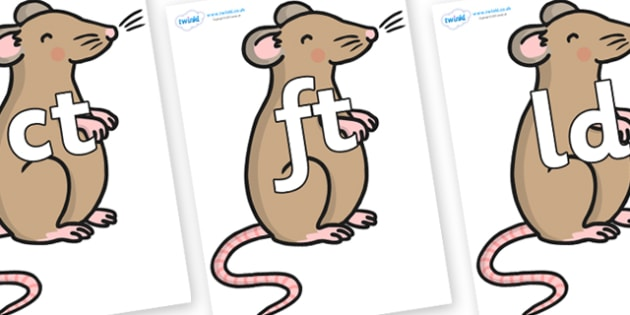 Final Letter Blends on Mouse - Final Letters, final letter, letter blend, letter blends, consonant, consonants, digraph, trigraph, literacy, alphabet, letters, foundation stage literacy