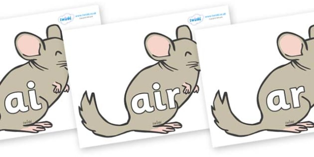 Phase 3 Phonemes on Chinchillas - Phonemes, phoneme, Phase 3, Phase three, Foundation, Literacy, Letters and Sounds, DfES, display