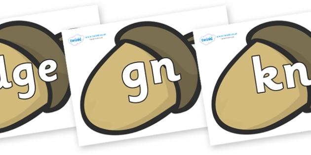 Silent Letters on Brown Acorns - Silent Letters, silent letter, letter blend, consonant, consonants, digraph, trigraph, A-Z letters, literacy, alphabet, letters, alternative sounds