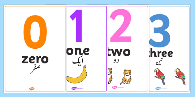 0-50 Number Word Image Posters Urdu Translation - urdu, display, sign, zero, fifty, numbers, maths, letters, early years, KS1, KS2