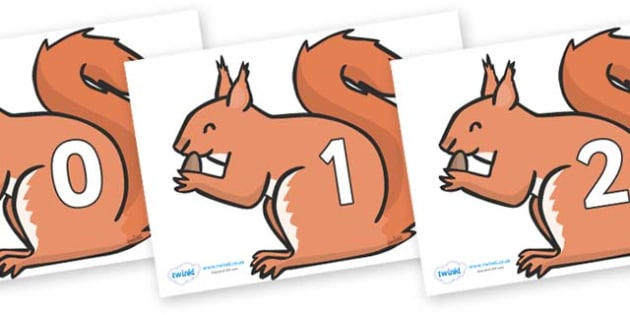 Numbers 0-31 on Red Squirrels - 0-31, foundation stage numeracy, Number recognition, Number flashcards, counting, number frieze, Display numbers, number posters