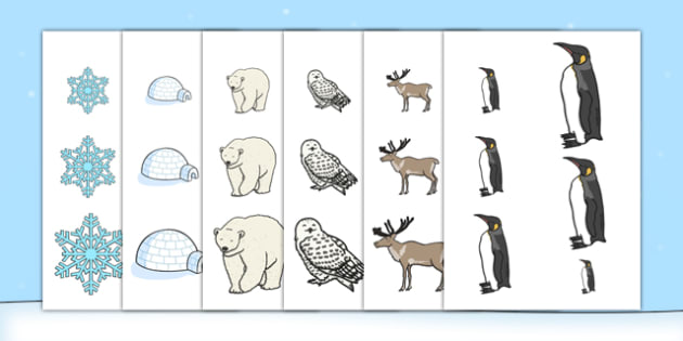 Polar Regions Size Ordering - EYFS, Early Years, North Pole, South Pole, polar, Arctic, Antarctic
