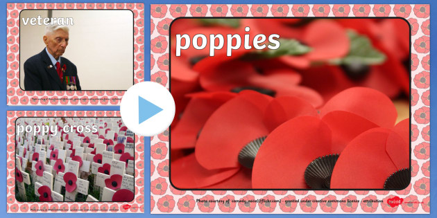 Remembrance Day Photo PowerPoint - remembrance day, photo powerpoint, remembrance day photo, remembrance day powerpoint, information powerpoint, powerpoint