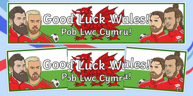 Good Luck Wales! Display Banner English/Welsh