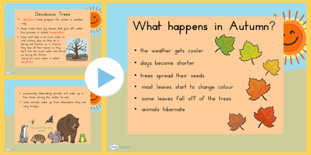 Autumn Information PowerPoint - seasons, weather, discussion