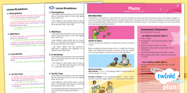 PlanIt - Science Year 1 - Plants Planning Overview CfE - planit, science, year 1, plants, planning overview, cfe