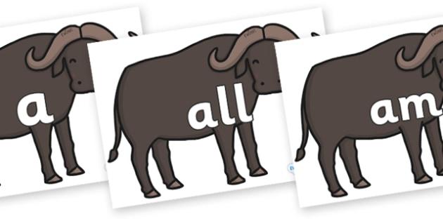 Foundation Stage 2 Keywords on Buffalos - FS2, CLL, keywords, Communication language and literacy,  Display, Key words, high frequency words, foundation stage literacy, DfES Letters and Sounds, Letters and Sounds, spelling