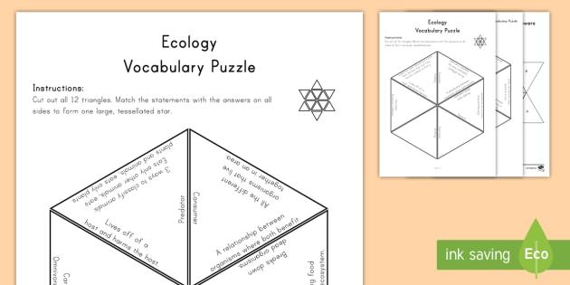 Ecology Vocabulary Puzzle Vocabulary Puzzle - food chain, predator, consumer, herbivore, carnivore, prey, science key words, science word definiti