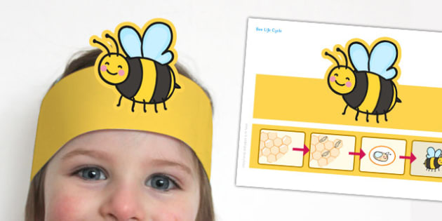 Bee Life Cycle Headband - bee life cycle, headband, bee, life cycle