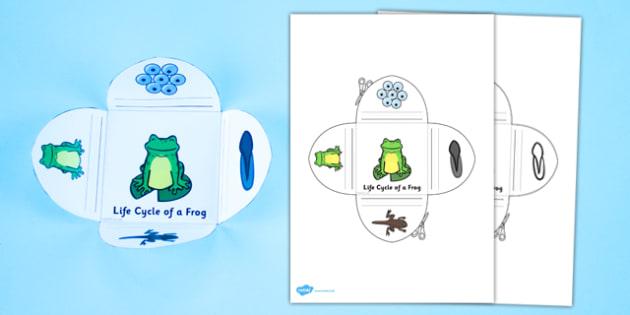 Frog Life Cycle Interactive Visual Aid - frog, life cycle, visual