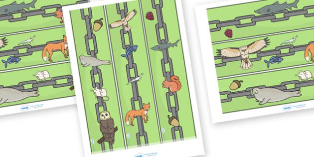 Food Chain Display Border - food, chain, food chain, foods, display border, classroom border, border, producer, consumer, predator, cycle, different foods, animals, animal, eating, growing, consuming, producing, predating, nature, natural, predators,