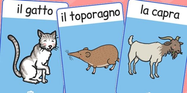 Italian Animals Display Posters - poster, displays, animal, Italy