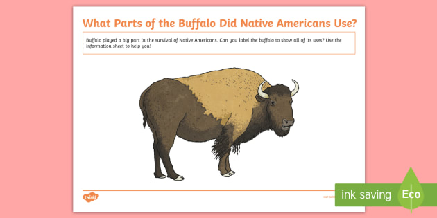 Native Americans Buffalo Labelling Activity Sheet-Scottish - Native Americans, buffalo, buffalo uses,Scottish