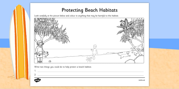 Protecting Beach Habitats Colouring Activity - australia, Science, Year 1, Beach, Habitats, Australian Curriculum, Living, Living Adventure, Environment, Living Things, Animals, Plants, Worksheet